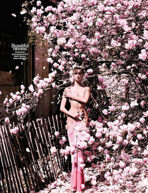 flower-bomb-selected-by-viktor-rolf-vogue-NL-november-2013-02.jpg